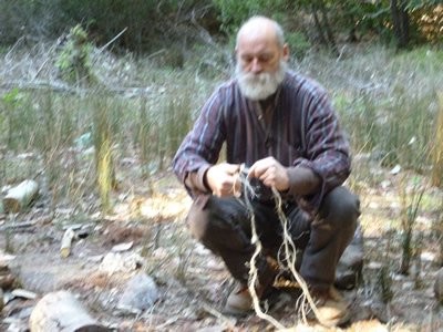 making the soap-root cordage