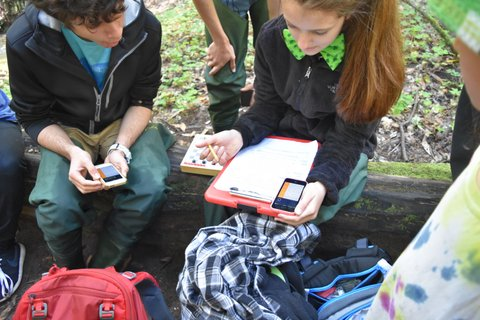Students calculating health of the creek